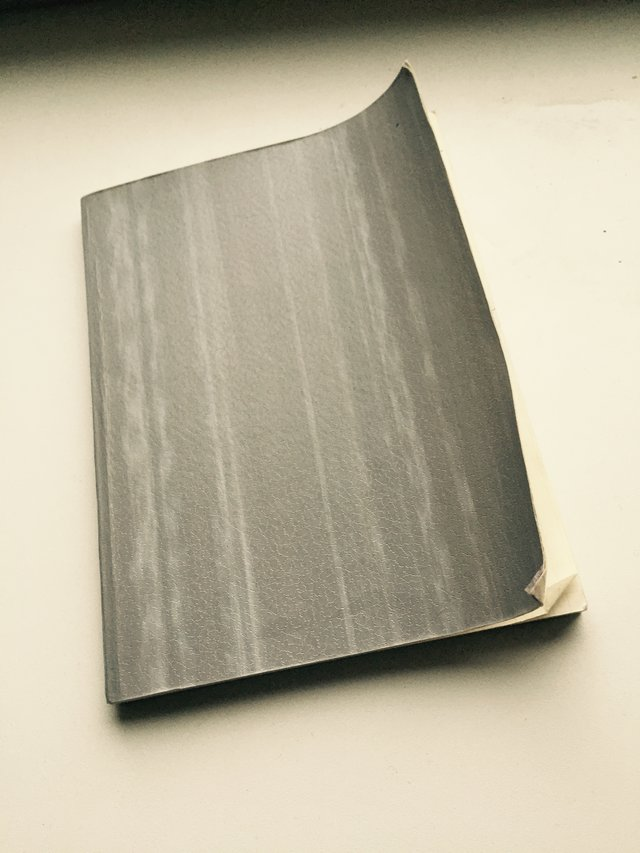 This dull grey journal was my first diary at the age of 9.